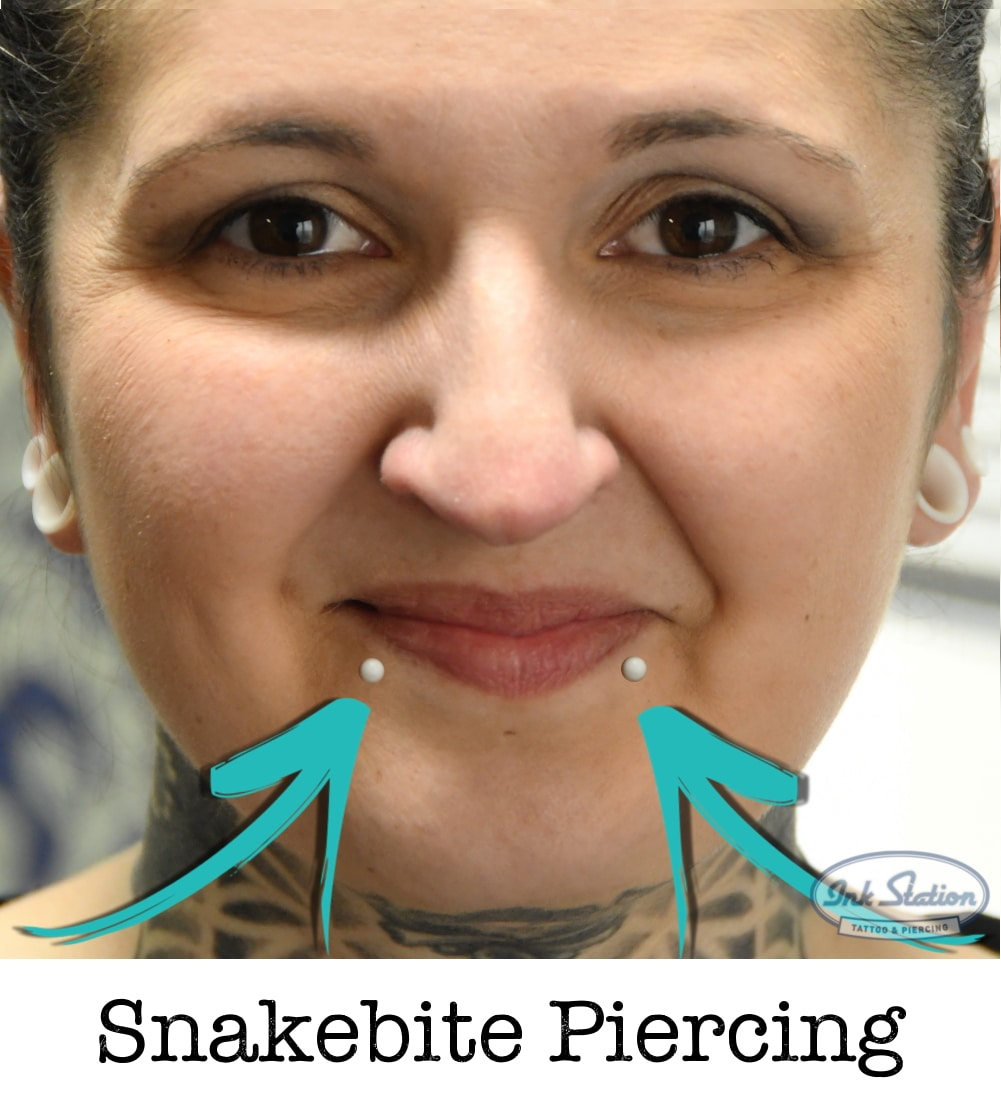 Snakebite piercing piercing ABC ink station stuttgart piercingstudio