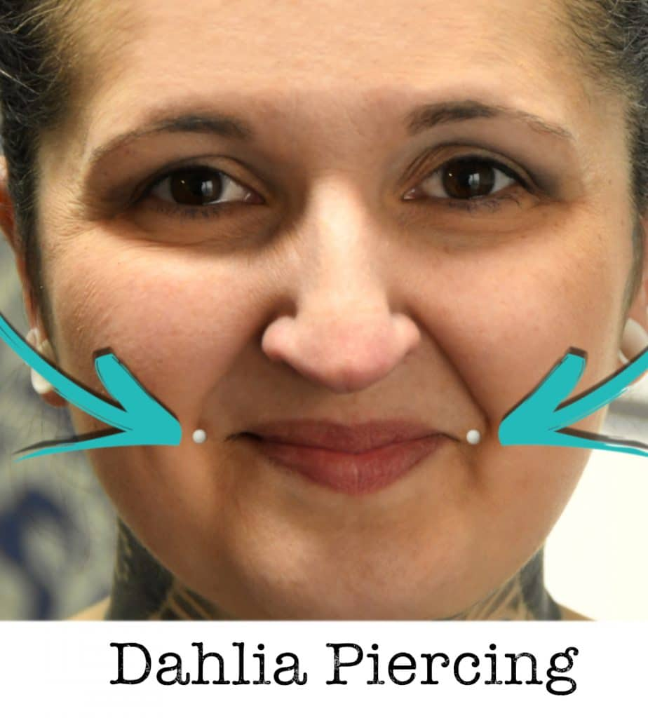 Dahlia piercing piercing ABC ink station stuttgart piercingstudio