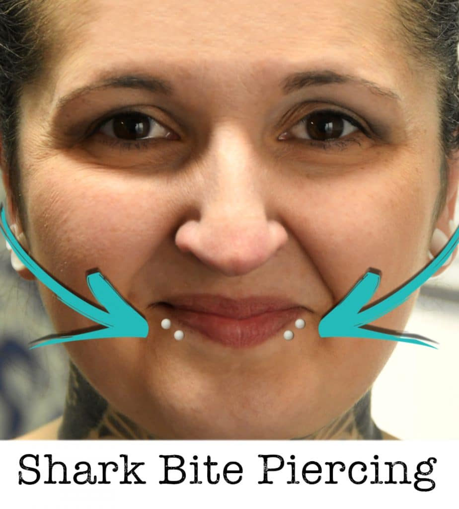 Shark bite piercing piercing ABC ink station stuttgart piercingstudio