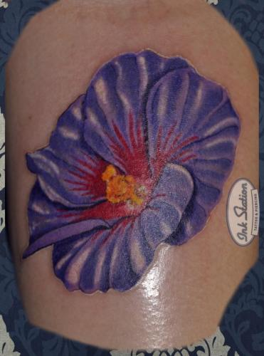 hybiskus realistic colored Tattoo stuttgart taetowierung 0711 fineline inkstation inked inkstationtattoo
